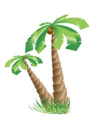 Signature Tree of The Tropics