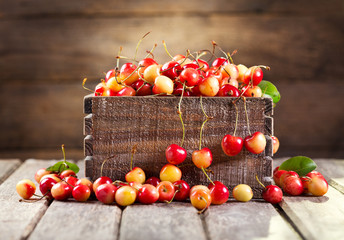 still life with fresh cherries