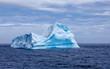 Leinwanddruck Bild - Iceberg sphynx in Antarctica-2