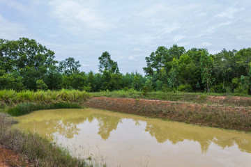 Countryside and mud scenery