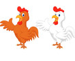 Cute rooster cartoon presenting