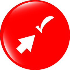 computer button with arrow and check mark, web icon isolated