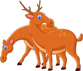 Cute deer cartoon couple
