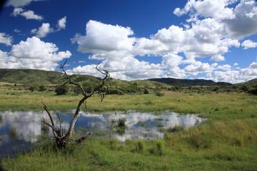 parco nazionale pilanesberg sudafrica