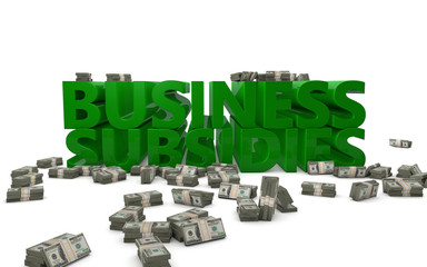 Business Subsidies Investment Handout