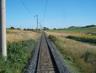 Dalla coda del treno