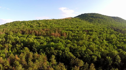 Balkan mixed forest, aerial view