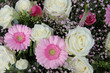 pink gerberas and white roses in bridal arrangement