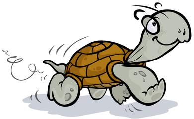Running Tortoise.