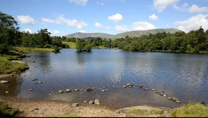 Tarn Hows near Hawkshead Lake District National Park England