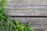 Fototapeta herbs