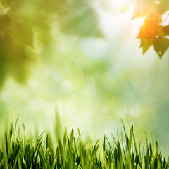 Green Nature, abstract environmental backgrounds for your design