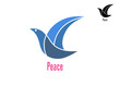 Dove bird as a peace symbol