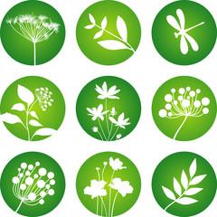 Floral circular icons