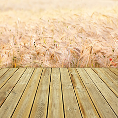Wooden deck floor and wehat field