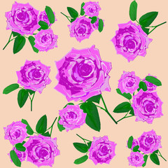 Seamless rose flower blossom. vector pattern