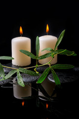 Beautiful spa setting of green tendril passionflower, candles an