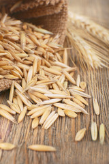 Rye grains and ears on table, close-up