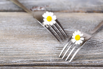 Forks with daisy flowers, on wooden background