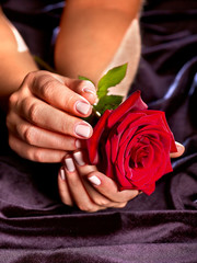 Female hand with red rose flower in black dress