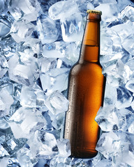 Bottle of beer in ice cubes.