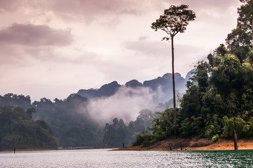 Misty dusk, Khao Sok National Park