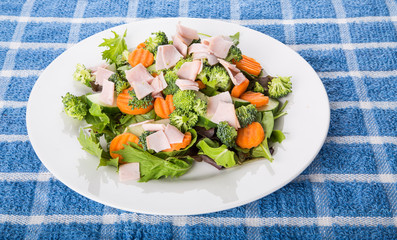Fresh Salad of Greens Carrots and Sliced Turkey