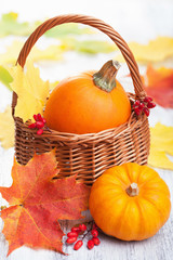 decorative pumpkins and autumn leaves in basket