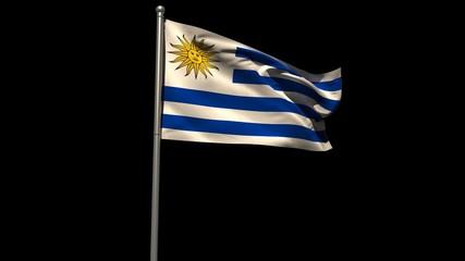 Uruguay national flag waving on flagpole
