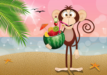 Monkey with watermelon on the beach