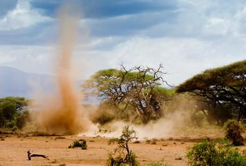 Sand storm in Amboseli