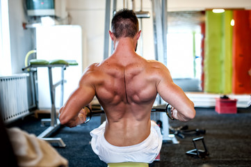 muscular man on daily workout routine at gym, close-up of back