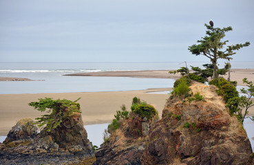 Oregon beach with rocks and trees