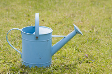 Blue watering can on grass