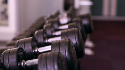 Rack of heavy black dumbbells