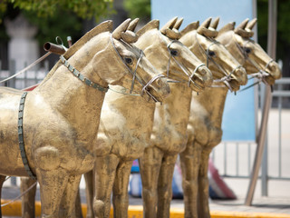 Terracotta Horses in Xian