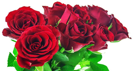 Bouquet of red roses on white background with clipping path