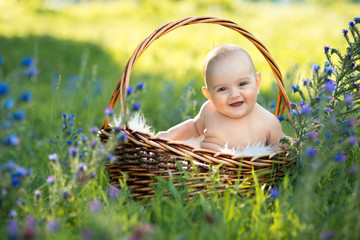 small naked smiling child sitting in a basket