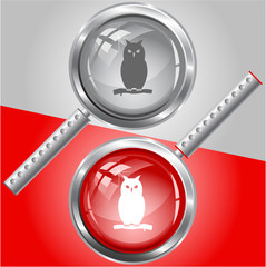 Owl. Vector magnifying glass.