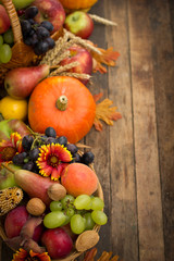 Autumn harvest