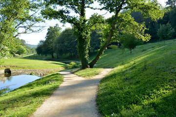 camino entre la hierba de un parque de lugo