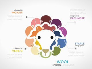 Wool concept infographic template with sheep