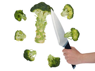 Broccoli cut into pieces with a knife