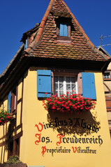 Haut Rhin, the picturesque village of Eguisheim