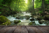 forest waterfall - 67510064