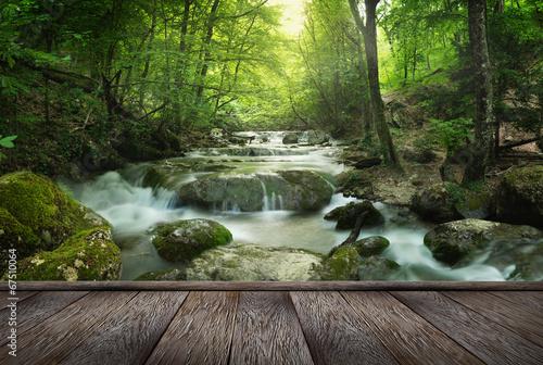 Foto op Canvas Bossen forest waterfall