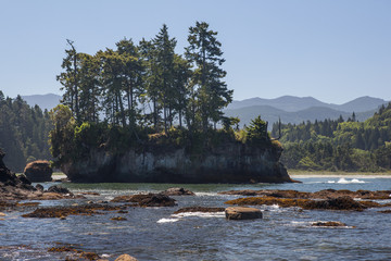 Island on Olympic Peninsula