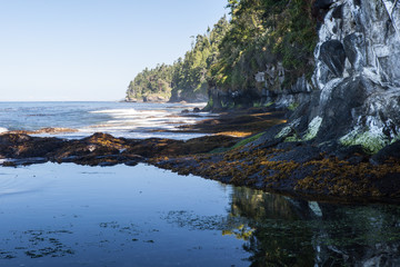 Washington Coast 2
