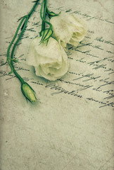 old handwritten love letter with flowers