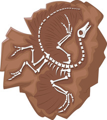 Cartoon Archeopteryx fossil